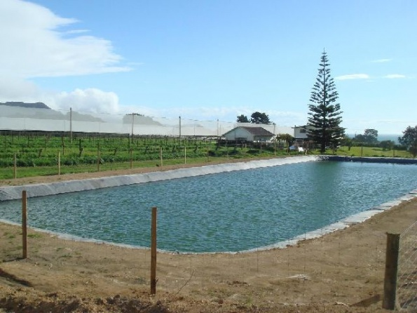 fire-frost-irrigation-ponds-009